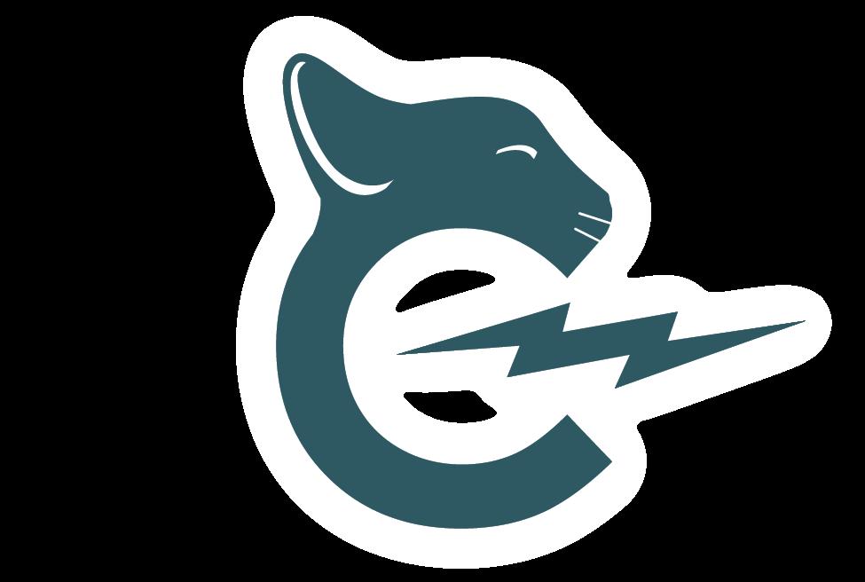 Casper Electronics Logo Submission